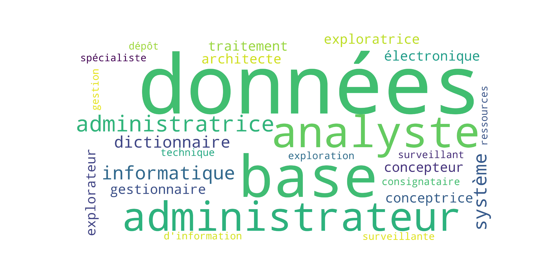 wordcloud_analyste_bd