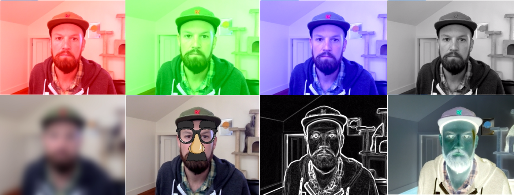 opentok-camera-filters collage