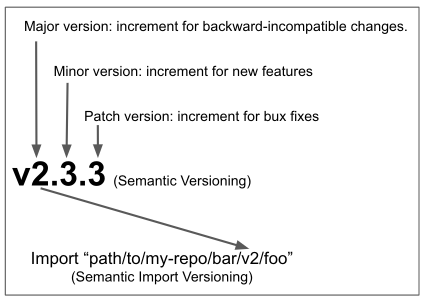 Semantic Import Versioning