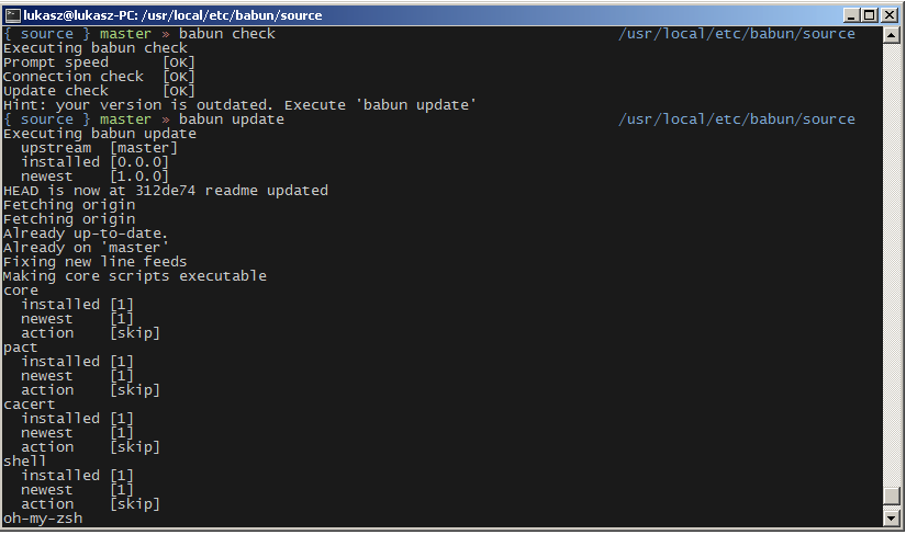 babun - a Windows shell you will love!