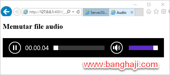 Audio Player IE