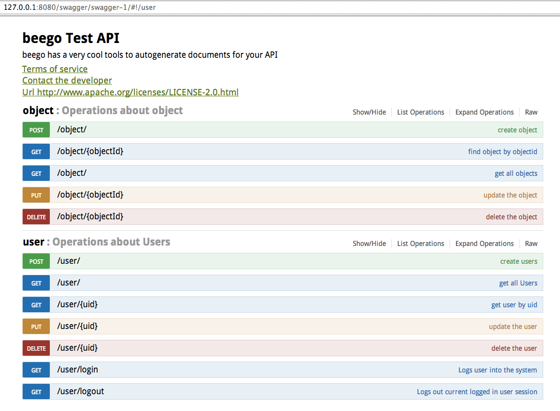 Beego: Building Web API with Auto Generated API Document Support