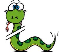 broken python snake