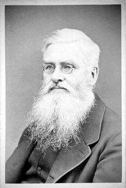 Portrait of Alfred Russel Wallace