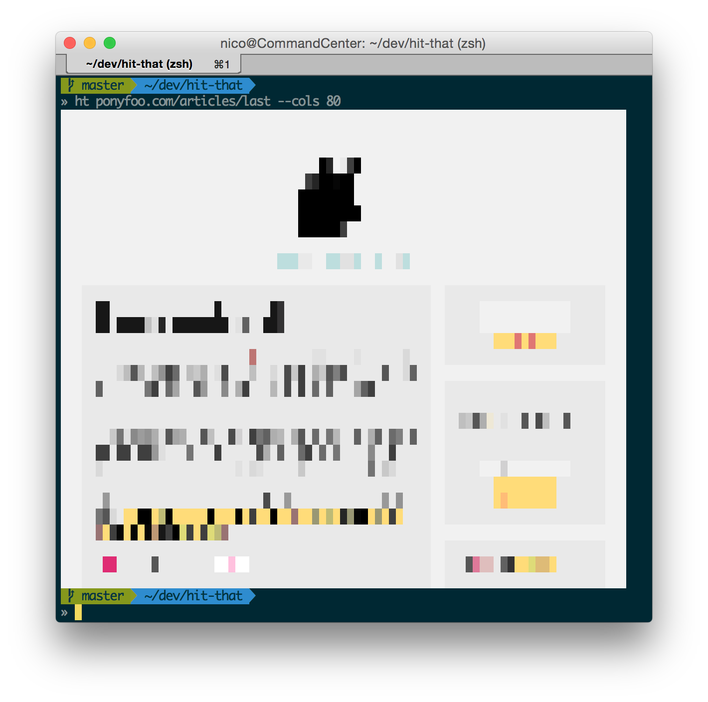 Pony Foo rendered as an image in terminal