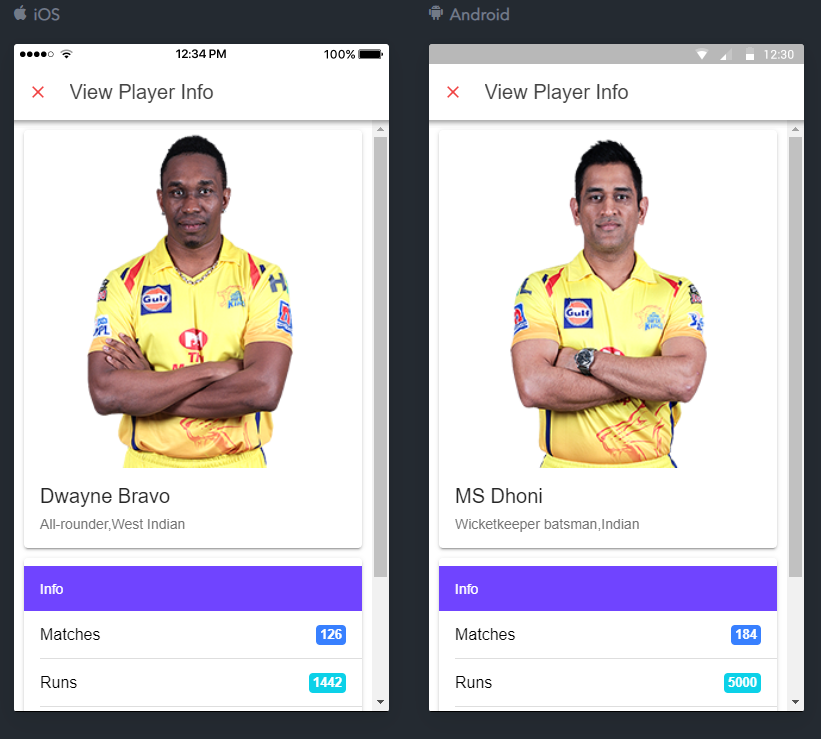 Ionic 4 Modal Example Using IPL 2019 Players Information