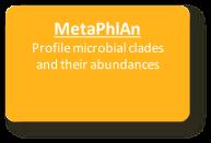 MetaPhlAn