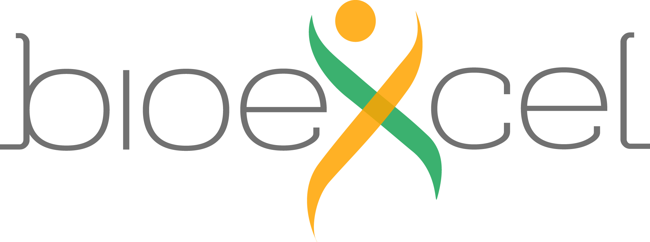 Bioexcel2 logo