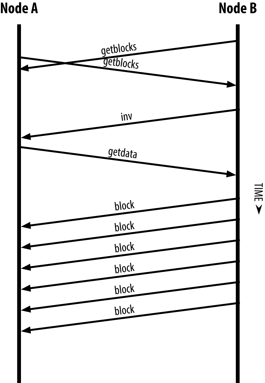 节点通过从对等节点读取区块来同步区块链图8-6