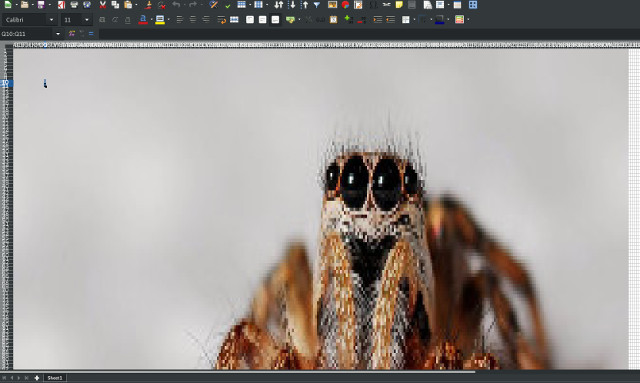 Picture of a nice spider inside an excel spreadsheet