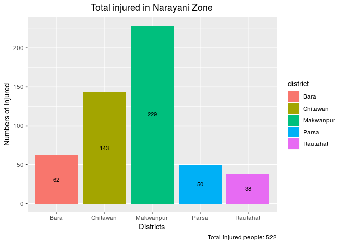 total injuries in narayani zone