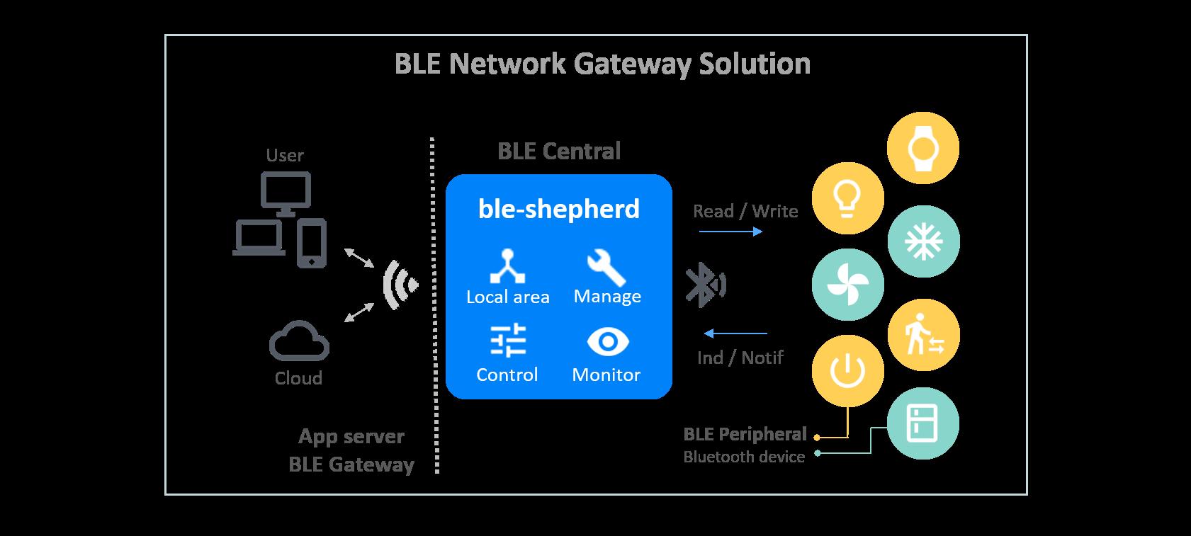 BLE Network