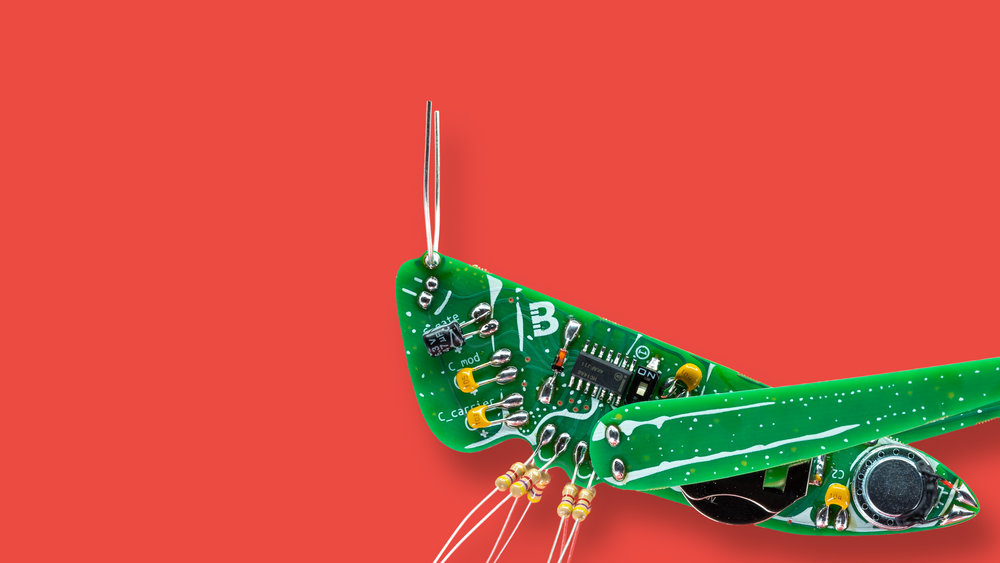 Image of The Conehead the cricket shaped PCB