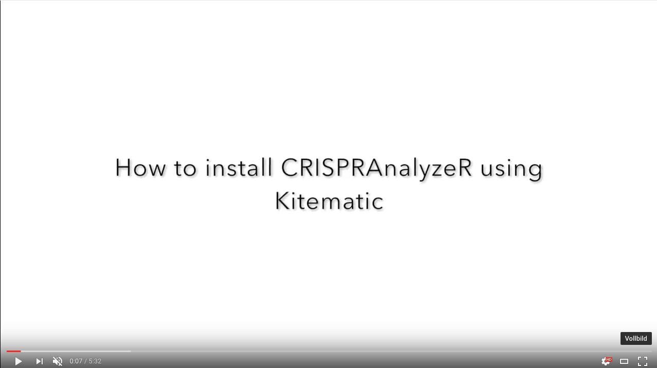 CRISPRAnalyzeR: How to install it using Kitematic