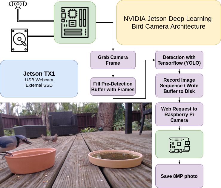 NVIDIA Jetson Powered Deep Learning Bird Camera