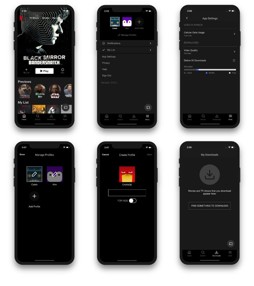 netflix screens