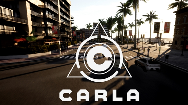 CARLA Video
