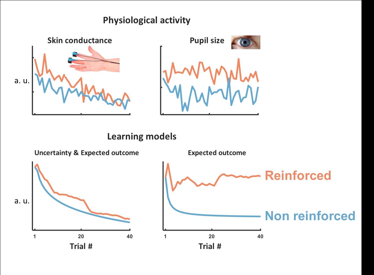 Modeling associative learning