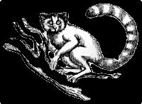 Kuyruk Logo