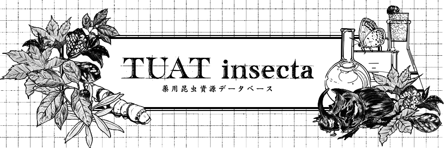 TUAT insecta