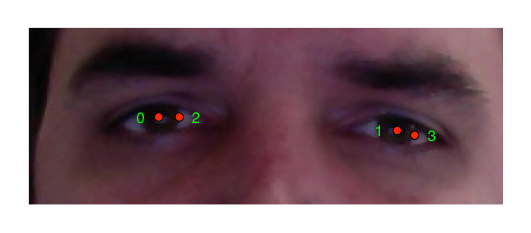 avatar-eyes-annotation.png