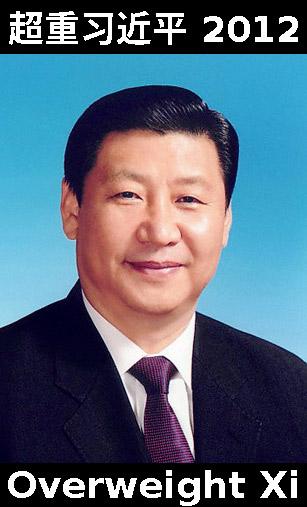 Xi Jinping portrait 2012