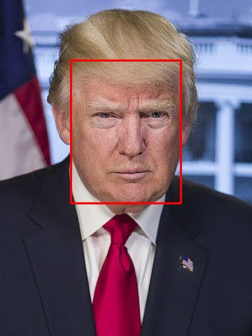 Trump boxed face.