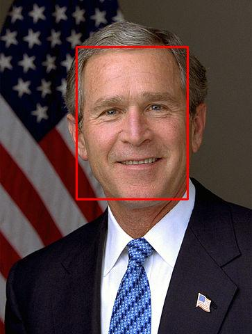Bush boxed face.