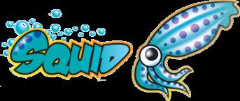 Proxy image squid
