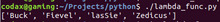 lambda function python