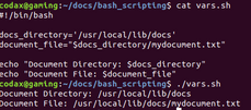 bash variables linux