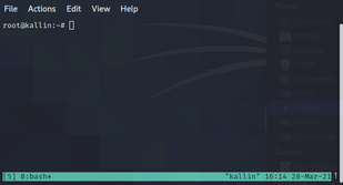 tmux linux screen