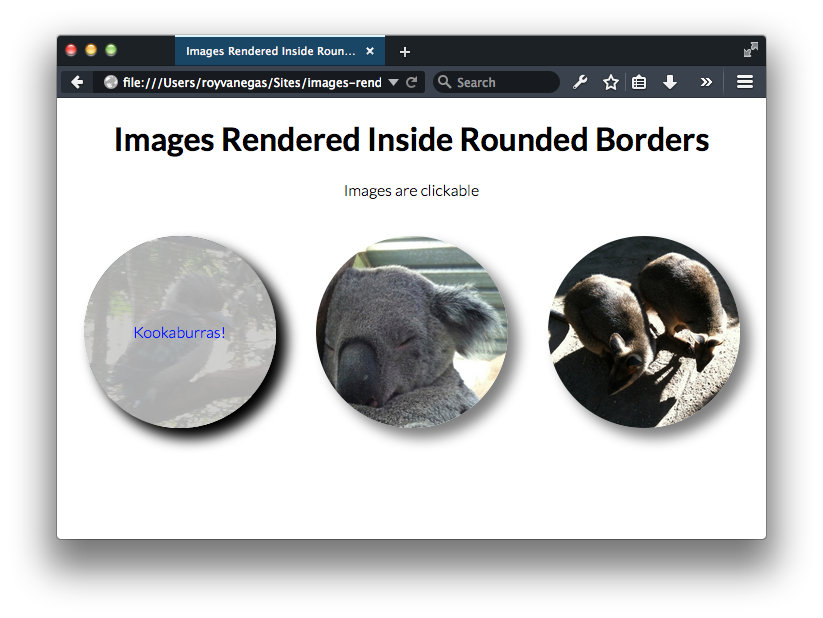 Example of images rendered inside circles using borders