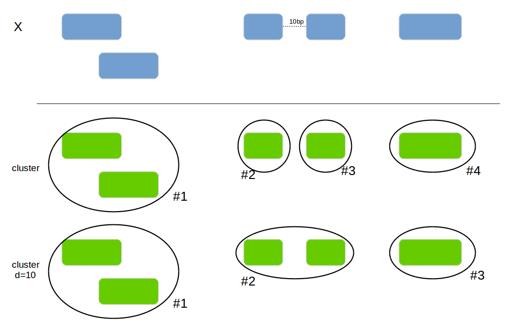 genome_cluster
