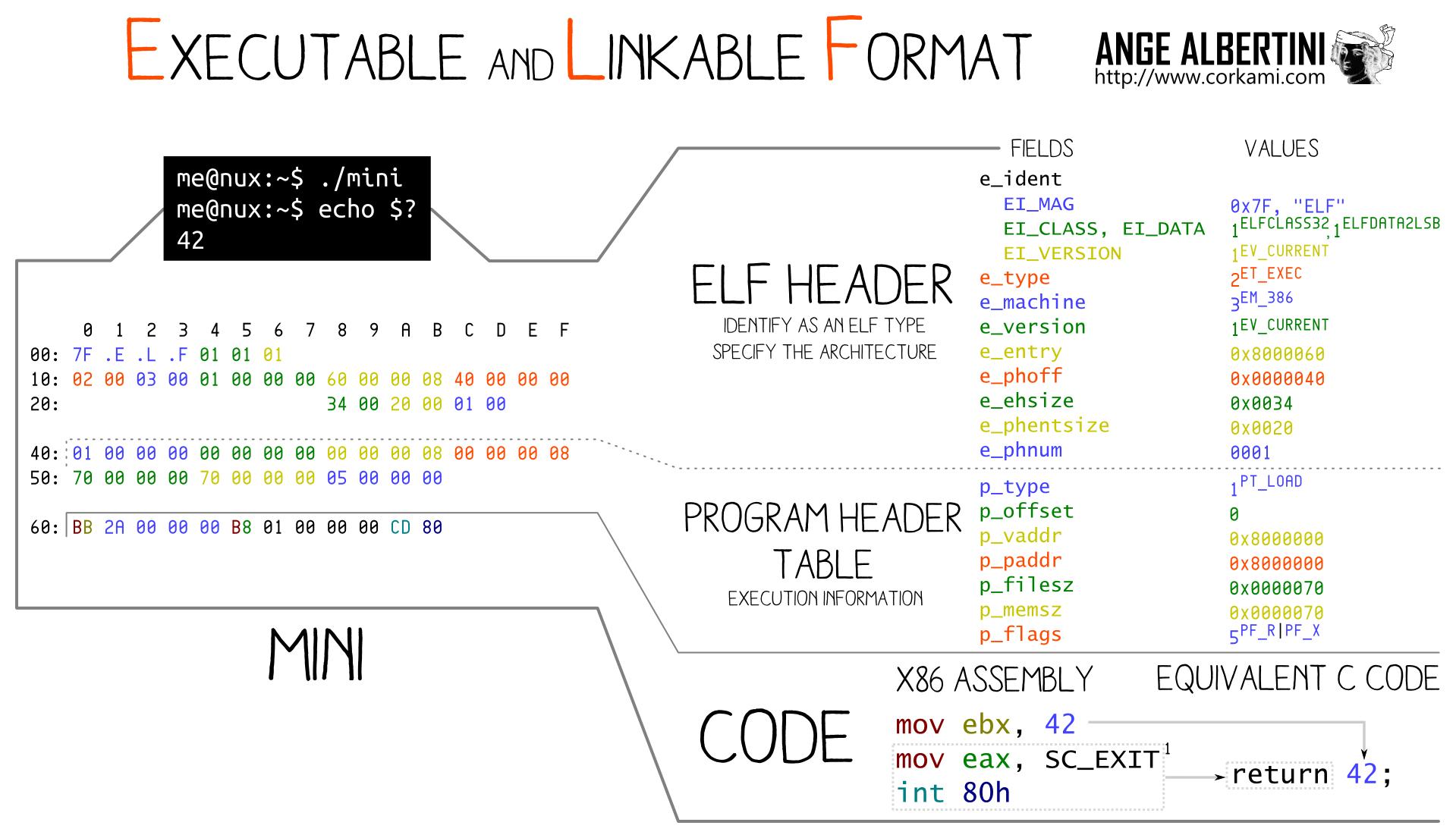 an ELF file