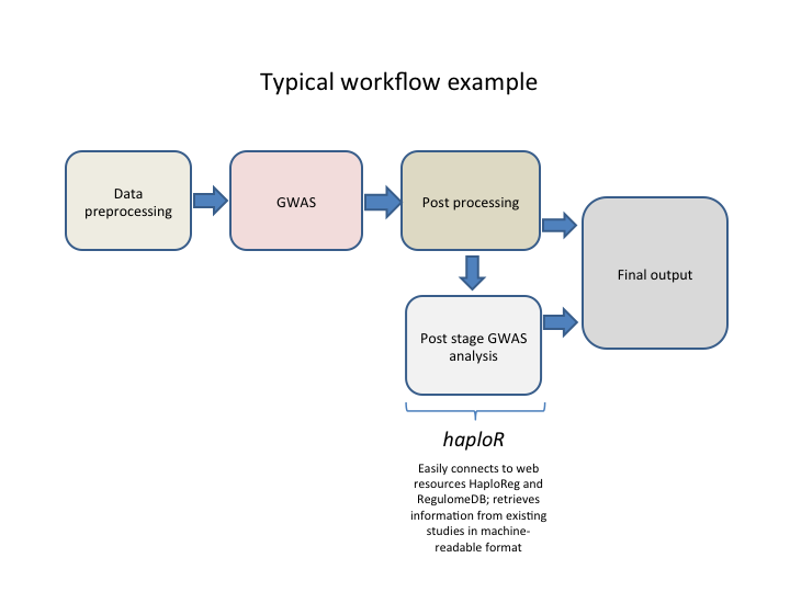 Typical analysis workflow