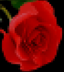 image in terminal
