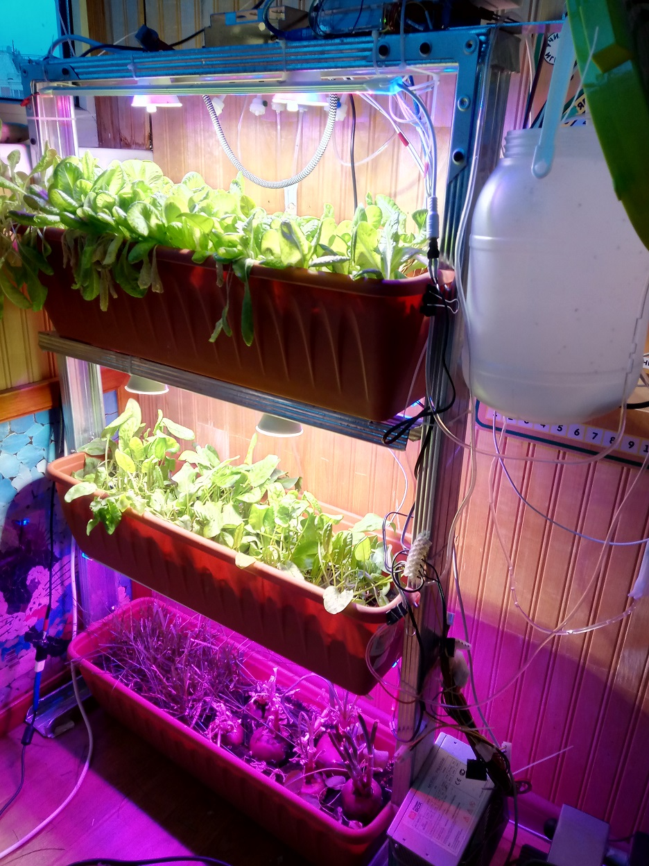 Домашний огород своими руками Arduino