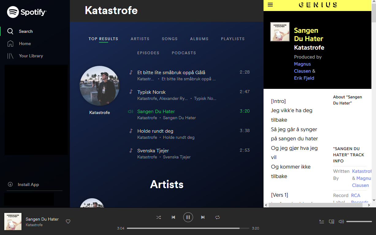 Screenshot of spotify web player with lyrics
