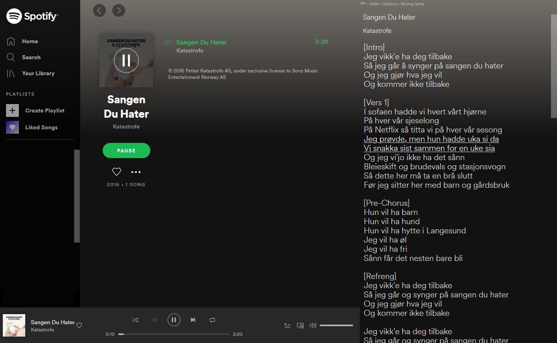 Screenshot of spotify web player with lyrics