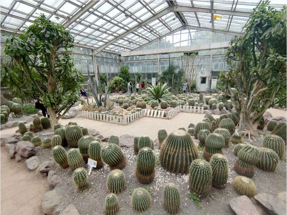 2021.3 成都·植物园