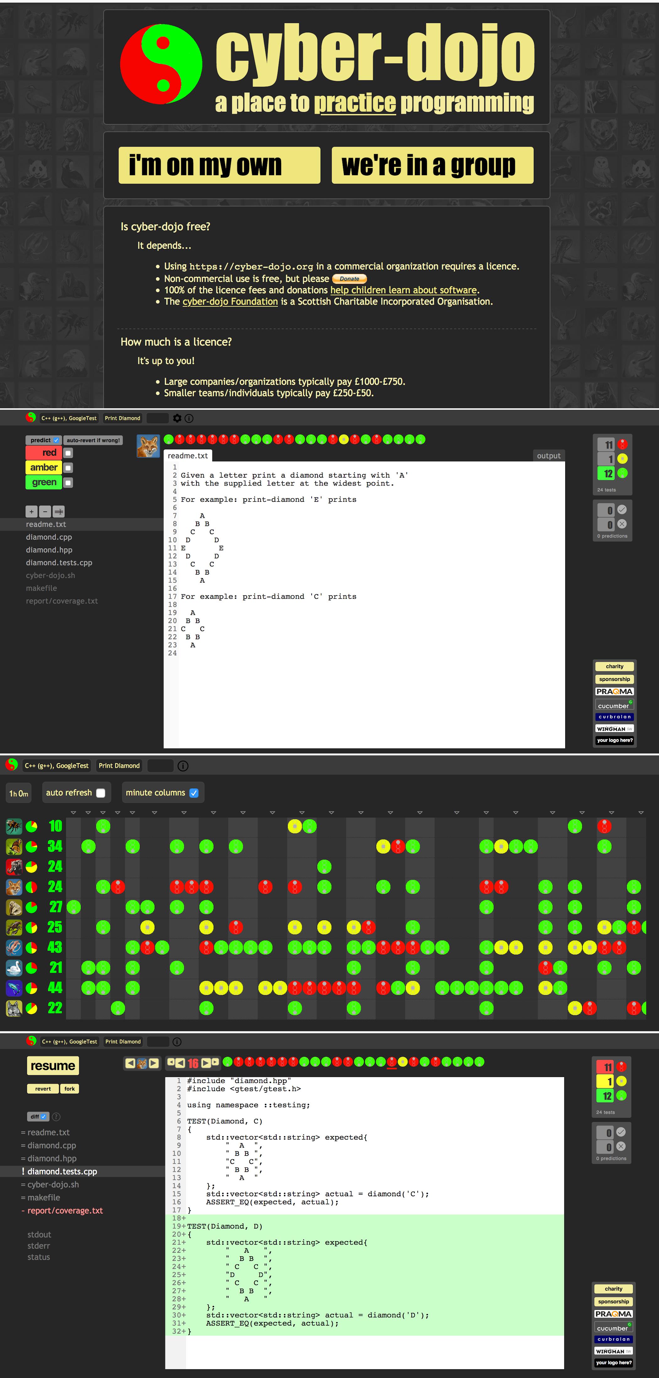 cyber-dojo.org home page