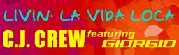https://github.com/dancervic/DDR-Graphics/blob/master/DDR%204thMIX%20PLUS/256x80%20adds/LIVIN'%20LA%20VIDA%20LOCA.png?raw=true