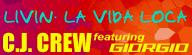 https://github.com/dancervic/DDR-Graphics/blob/master/DDR%204thMIX%20PLUS/system/LIVIN'%20LA%20VIDA%20LOCA.png?raw=true