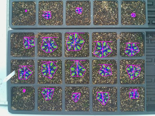 Multi-plant tutorial