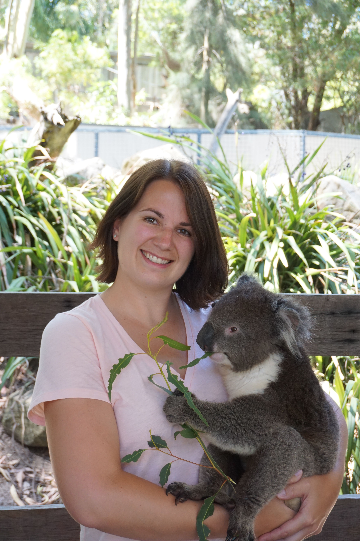 Rachel Koala