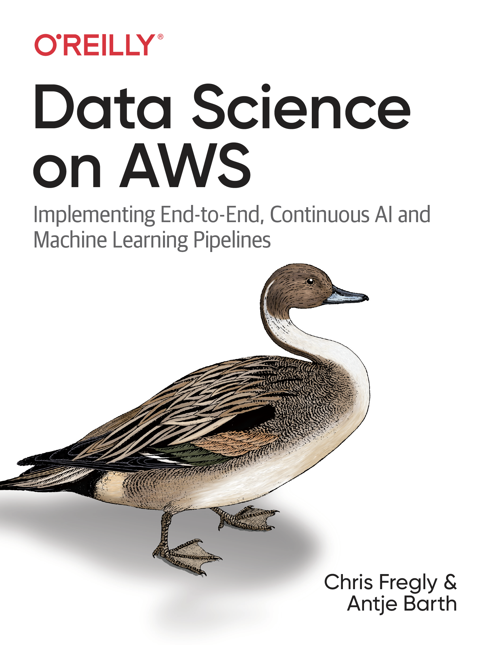 Data Science on Amazon Web Services