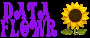 dataflowr