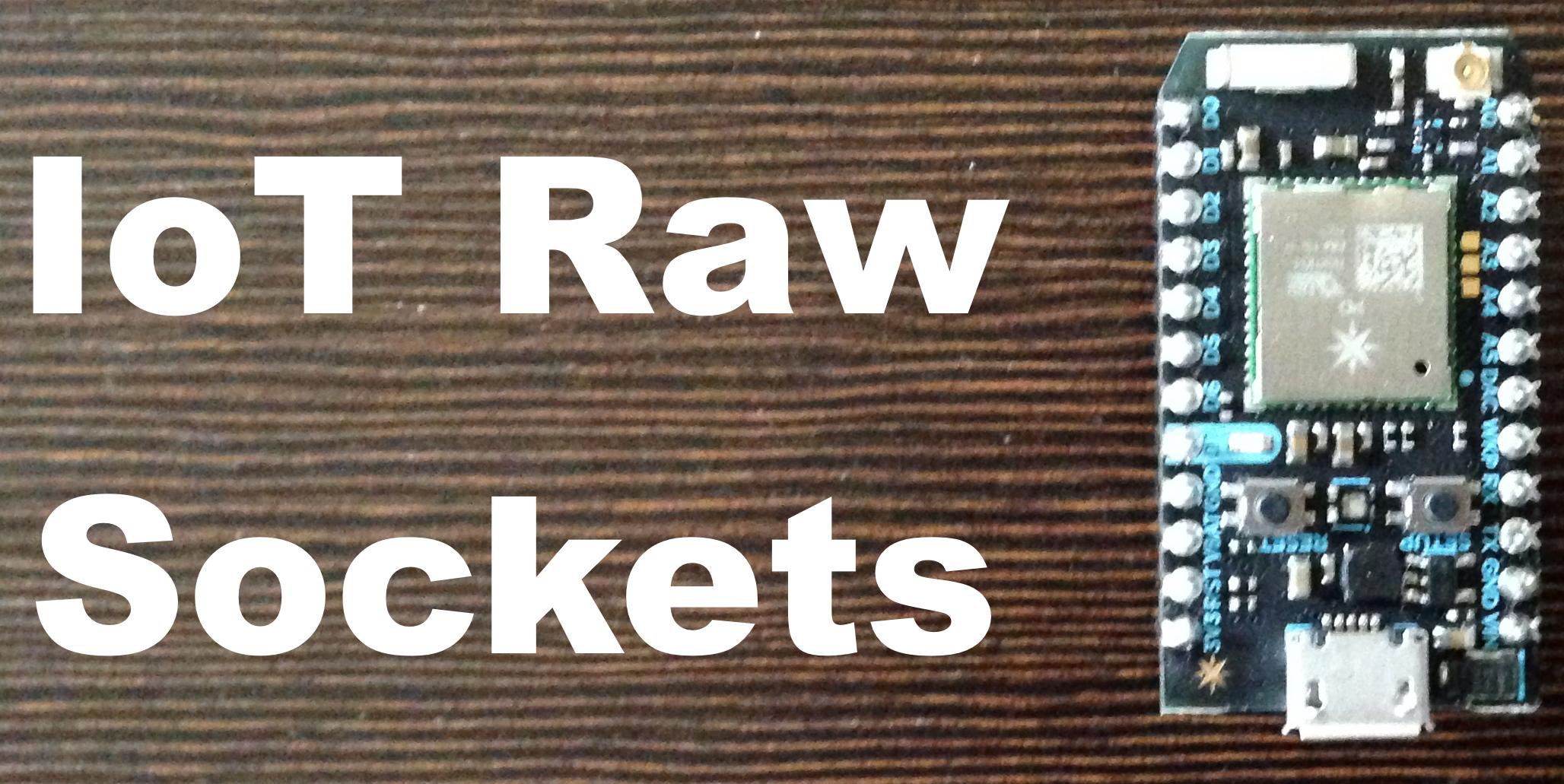IoT Raw Sockets