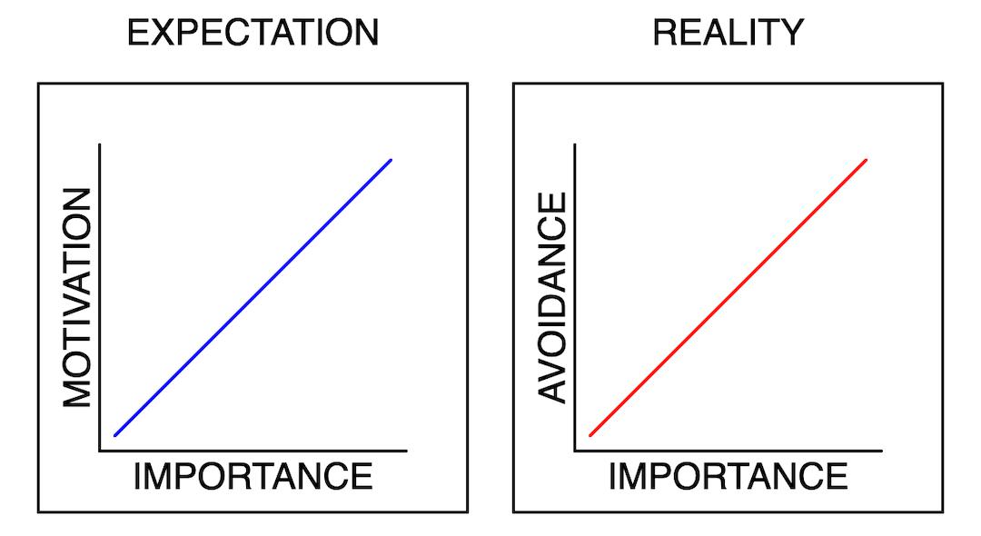 Expectation vs Reality